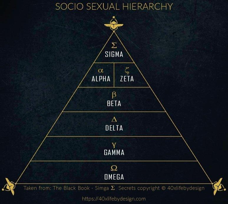sigma male pic socio sexual hierarchy pic