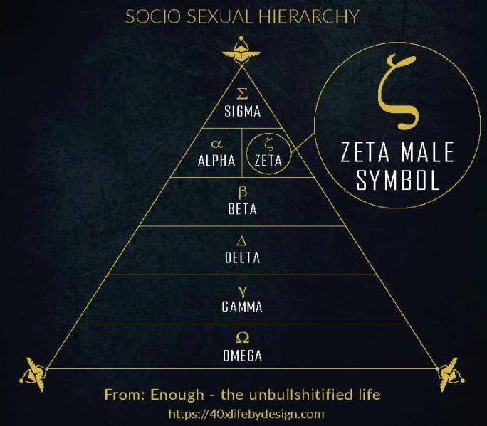 Zeta male ranking on the socio sexual hierarchy and the zeta male symbol
